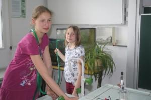 Aquarienpflege